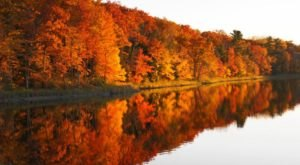 Take A 1.5-Hour Drive Through Wisconsin To See This Year's Beautiful Fall Colors