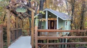 Experience The Fall Colors Like Never Before With A Stay At Branson Treehouse Adventures In Missouri