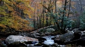 Laurel Falls In Tennessee Will Soon Be Surrounded By Beautiful Fall Colors
