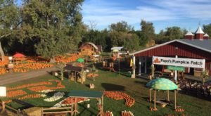North Dakota's Iconic Papa's Pumpkin Patch Has Been Rated One Of The Top 10 In The Country
