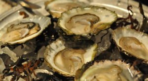 Toxic Algae Has Contaminated Some Shellfish In Washington And If Eaten Can Cause Paralysis And Even Death