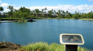 Discover Seven Ancient Fishponds And Other Coastal Gems In Hawaii's Kalahuipua'a Historic Park