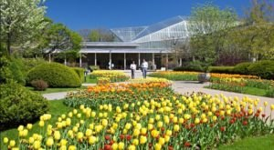 This Beautiful 10-Acre Botanical Garden In Cleveland Is A Sight To Be Seen