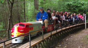 Tiny Train Lovers In Washington Will Enjoy Kitsap Live Steamers