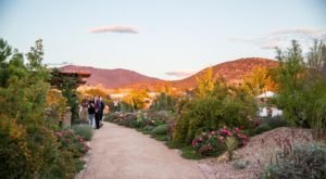 Santa Fe Botanical Garden In New Mexico Is The Best Way To Relax In Nature