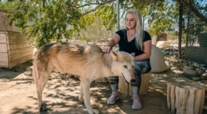 Not Many People Know About Wolf Mountain Sanctuary Right Here In Southern California
