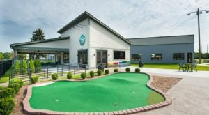 Play Mini Golf And Eat Delicious Pizza At Royal Oak Golf Center Near Detroit