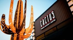 Treat Your Tastebuds To 9 Different Types Of Tacos At Cactus, A Nebraska Cantina