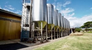 The Largest Craft Brewery In Hawaii Is Maui Brewing Company And Their Tours Are Phenomenal