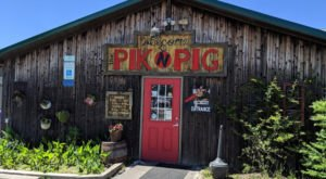 Watch Planes Land While You Chow Down On Delicious BBQ At Pik N Pig BBQ In North Carolina