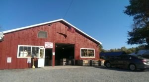 Try The Piping Hot Donuts And Cider From Ritter's Cider Mill In Pennsylvania