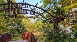 7 Beautiful Hikes In Kansas That Lead To Fairytale Foot Bridges