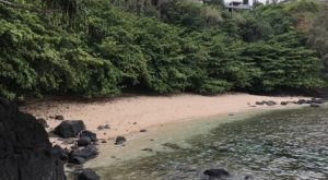 Hawaii's Sealodge Trail Is Less Than A Mile Long And Takes You To A Beautiful Secluded Beach
