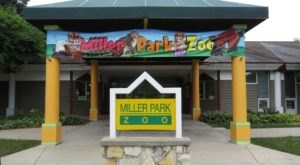 Most People Don't Know About Miller Park Zoo, An Underrated Attraction Hiding In Illinois