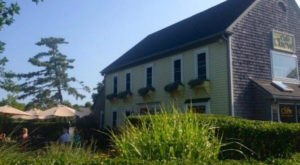 Have The Best Lunch On The Cape At Cafe Chew In Massachusetts
