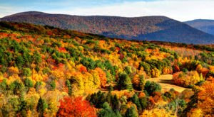 View Beautiful Fall Foliage With A Hike To Massachusetts' Veterans Memorial Tower