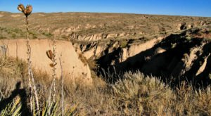 Arikaree Breaks Is A Little Kansas Canyon That Is Simply Stunning