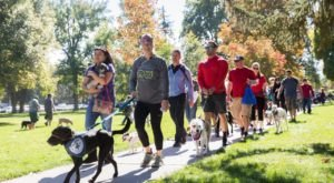 Strut Your Mutt In Liberty Park At This Doggone Great Utah Festival
