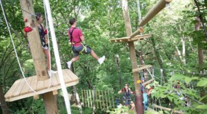 TreeRush Adventures Is The Newest Sky-High Adventure In Nebraska