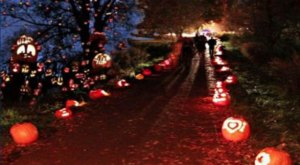 Walk Through A Village Of Glowing Pumpkins At The Jack-O-Lantern Trail In Colorado
