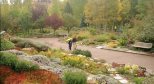Stroll Through Hundreds Of Various Trees During A Visit To Yampa River Botanic Park In Colorado This Autumn