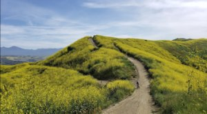 Take The 5-Mile Roller Coaster Hiking Trail To See Some Of Southern California's Most Beautiful Scenery
