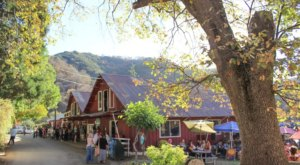 The 7 Best Places In Southern California To Get Your Fresh-Pressed Apple Cider Fix This Fall