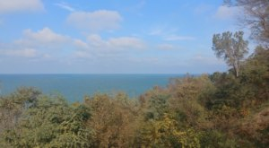 Fall Foliage Meets A Beautiful Waterfront Overlook At Lookout Park In Michigan