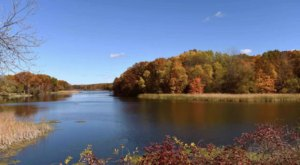 Surround Yourself With Fall Foliage On Wildwing Trail, An Easy 2-Mile Hike Near Detroit