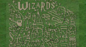Get Lost At Cornbelly's, An 8-Acre Corn Maze In Utah This Autumn
