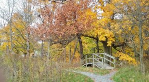 This Easy Fall Hike Near Buffalo Is Under 2 Miles And You'll Love Every Step You Take
