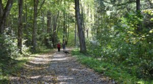 The Spooky Jakes Creek Trail In Tennessee Will Lead You To The Elkmont Ghost Town