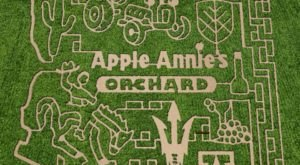 Drink Wine As You Navigate Arizona's Largest Corn Maze This Month