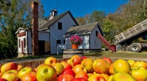 Sip Cider And Eat Donuts At Connecticut's Historic B.F. Clyde's Cider Mill