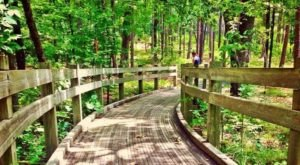 Take A Family Nature Walk At Friendship Loop Trail In Arkansas