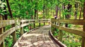 Take A Family Nature Walk At Friendship Loop Trail In Arkansas