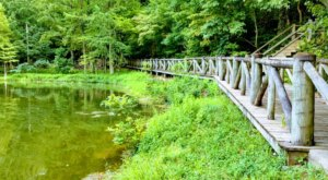 Lake Ponder Boardwalk Trail In Arkansas Leads To Incredibly Scenic Views