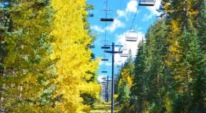 Experience Arizona's Fall Colors From Above On The Snowbowl Ski Resort Gondola