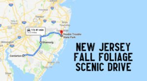 Take A 2-Hour Drive Through New Jersey To See This Year's Beautiful Fall Colors