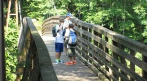 The 1-Mile Chau Ram Falls Trail Is A Beautiful And Easy Trail To Take In South Carolina