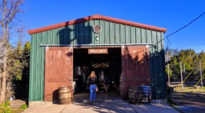 Visit These 4 Charming Cider Mills In Texas For A Grown-Up Fall Treat
