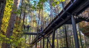 The Longest Elevated Canopy Walk In The Nation Can Be Found At Whiting Forest In Michigan