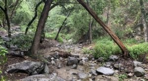 Monrovia Falls Is A Beginner-Friendly Waterfall Trail In Southern California That's Great For A Family Hike