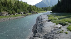 Follow Bird Valley Trail For A Easy Day Hike In The Alaskan Mountains