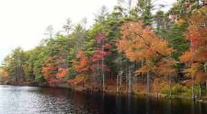 A Hike Through Fisher Brook Wildlife Refuge Will Take You To The Most Spectacular Fall Foliage In Rhode Island