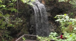 See The Tallest Waterfall In Florida At Falling Waters State Park