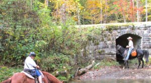 Enjoy Fall's Beauty On A Horseback Waterfall Tour At Smokemont Riding Stables In North Carolina