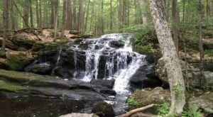 The 1-Mile Tucker Brook Falls Trail In New Hampshire Takes You Through A Beautiful Wooded Landscape