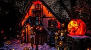 Don't Miss The Jack-O-Lantern Spectacular, The Most Magical Halloween Event In All Of Rhode Island