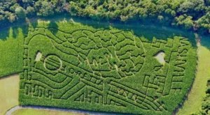 Get Lost In The Awesome Tennessee Corn Maze This Fall At Honeysuckle Hill Farm